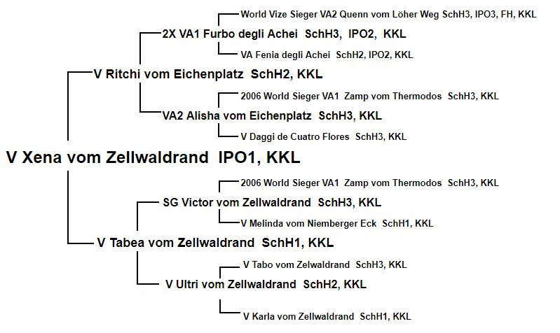 Pedigree of Xena vom Zellwaldrand IPO1
